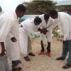 Shirkadda Urur-Livestock oo soo gabagabeeyay Siminnaar lagu baranayay xannaanada xoolaha