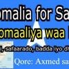 Somalia for Sale: Soomaaliya waa iib (Wasaarada Maaliyadda)