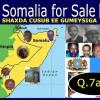 Soomaaliya waa iib (Q.7aad)