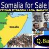 Soomaaliya Waa iib: Ciidamadu Jamhadaha ha'isku dhiibeen….