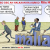 iibinta Astaanta .SO. ee Qaranka Somaliyeed
