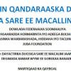 QANDARAAS HOOSAAD: DAYACTIRKA DUGSIGA SARE EE MACALIM JAAMAC