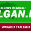 Halgan.net oo labaraalriyey laguna  kordhiyey qayb cusub (Radio Halgan)