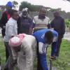 Shan Qof oo Soomaali ah oo Koonfur Africa lagu dilay Todobaadkani iyo cabsi kale oo jirta Warbixin – Daawo Video